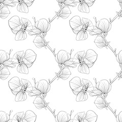 Beautiful monochrome, black and white seamless background with blooming magnolia tree branches