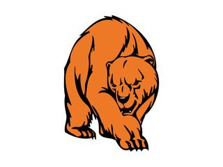 Bear Mascot Wild