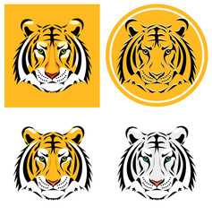 Tiger head. Vector illustration
