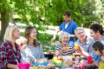 Family and friends having a picnic with barbecue
