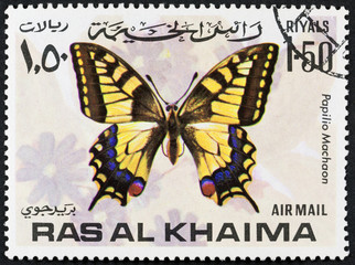 RAS AL KHAIMA - CIRCA 1978: a stamp printed by RAS AL KHAIMA shows butterfly, circa 1978