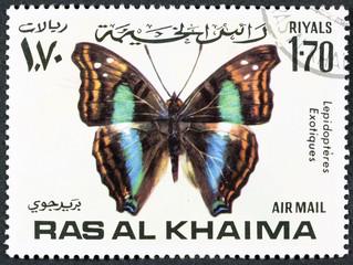 RAS AL KHAIMA - CIRCA 1978: a stamp printed by RAS AL KHAIMA shows butterfly, circa 1978