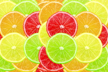 Multi color different citrus slices as background