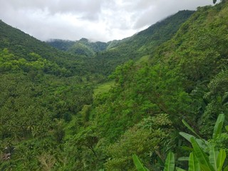 Mountains in Bohol