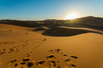 Sunrise over sand dune in the desert