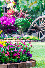 Flowers in the garden. /Landscaped flower garden with lots of colorful blooms.