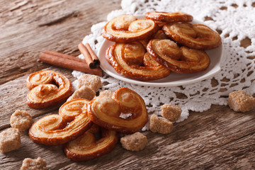 Palmiers biscuits with sugar and cinnamon close-up, horizontal