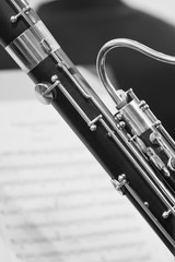 Fototapete - Detail of the bassoon in black and white colors