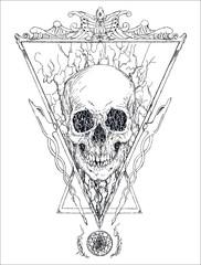 Detailed vector skull illustration