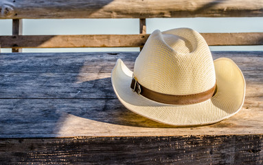 fedora hat  on wooden table nature country side background