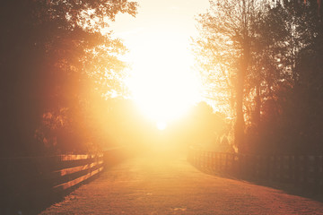 Rural country farm ranch grass road with three board wood fences under sunset or sunrise sunbeams with lens flare looking romantic divine heavenly mysterious warm serene transcendent
