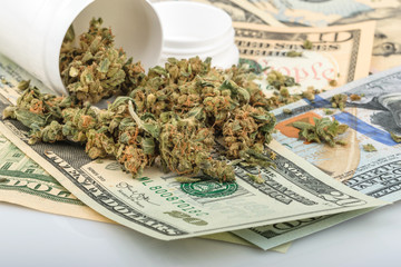 Marijuana buds on money