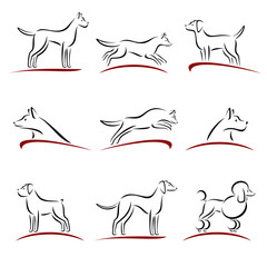 Dogs set. Vector