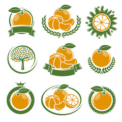 Mandarin labels and elements set. Vector