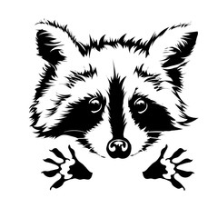 vector hug raccoon 2