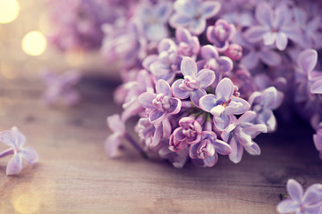 Fotoväggar - Lilac spring flowers bunch over wooden background