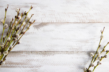 Fototapeta Gałązki wierzbowe na drewnianym stole obraz