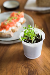 Cress salad grown at home in small recycled plastic cup. Selective focus.