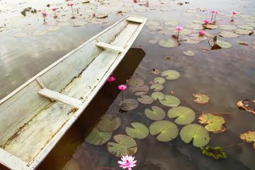 White rowboat in pink lotus pond