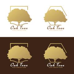 Gold and brown Oak tree logo vector design