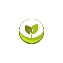 green leaf seed logo