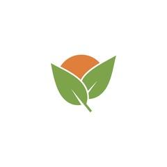 green leaf sun logo