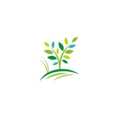 tree plant eco organic logo
