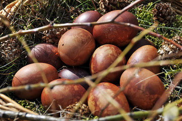 brown Easter eggs nature