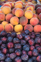 Fresh peaches and plums
