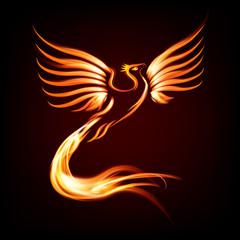 Phoenix bird fire silhouette