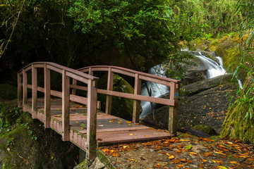 Small wood bridge in rain forest with waterfall in background