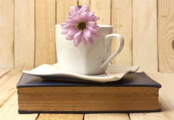 Tender pink chrysanthemum in white cup, on old book