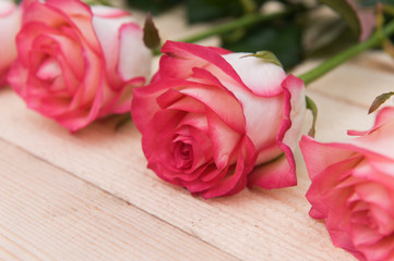 Beautiful pink roses on a dark wooden table