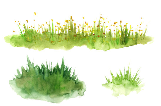 Green grass hand drawn