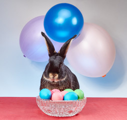 Easter bunny sitting behind a vase with Easter eggs under the colored balls