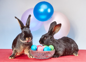 Little rabbits playing near a vase with Easter eggs under the colored balls