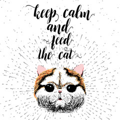 Door stickers Hand drawn Sketch of animals Keep calm and feed the cat. Sign with cute smiling cat. Motivational lettering on texture background. Inscriptions for pet lovers. Inspirational typographic calligraphy. Demanding phrase.