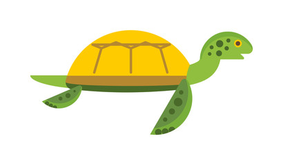 Vector illustration of a cute cartoon turtle.