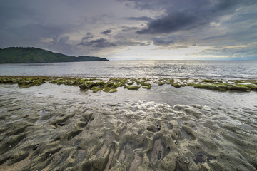 Natural green moss at beach rock with cloudy sunlight at Lombok beach, Indonesia.