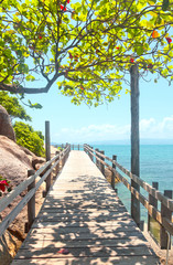 Wall Mural - wooden bridge along  sea coast