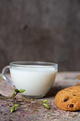 oatmeal cookies on the table milk in a glass cup and spring bran