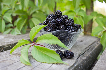 Aluminium Prints Sunflower Fresh berries, ripe BlackBerry in a Cup