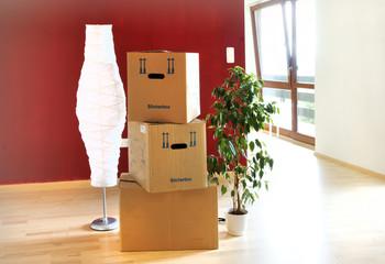 bilder und videos suchen blumenstock. Black Bedroom Furniture Sets. Home Design Ideas