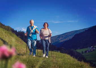 senior couple doing nordic walking