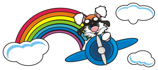 sky, clouds, rainbow, flying, pilot, airplane, aircraft, glasses, isolated, bunny, pet, farm, toy, cartoon, hare, rabit