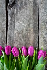 purple tulips on wooden surface