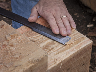 Hand Chiseling a Wooden Beam: A large Hemlock timber beam end being pared flat by hand with a long steel chisel