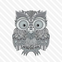 Vector zentangle owl illustration. Ornate patterned bird.