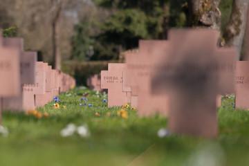 Gräberfeld auf einem Friedhof