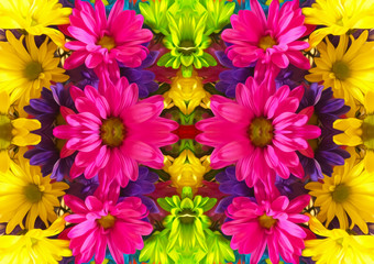 Abstract colorful flowers background - oil paint effect